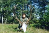 The European Red Deer hunting in Brjansk