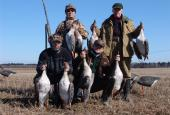 The Ducks and Geese hunting Leningrad region
