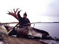 The Reindeer hunting in Taymyr