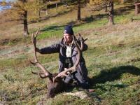 The Altai Wapiti or Maral hunting in Altay