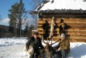 The Manchurian Wapiti or Izyubr hunting in Irkutsk region