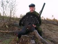 The Capercaillie and Black-cock hunting in Kostroma region