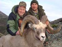 The Okhotsk Snow Sheep hunting in Magadan region